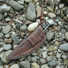 Bulisova Dead fish 3